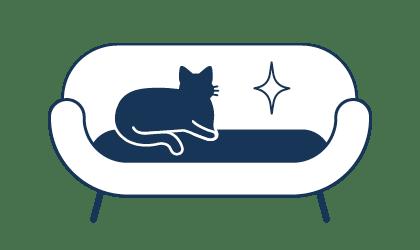 Professionelle Entfernung von Tierhaaren in der Wohnun oder im Büro